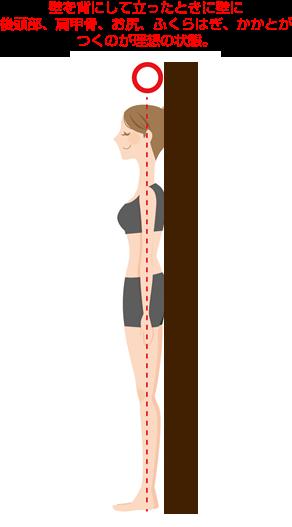 猫背チェックのやり方説明図